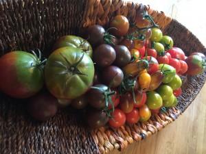 Ovanliga tomater